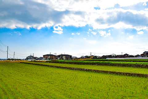 杉谷地区田園風景(小)